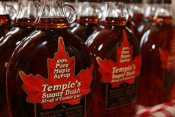 Temples maple syrup